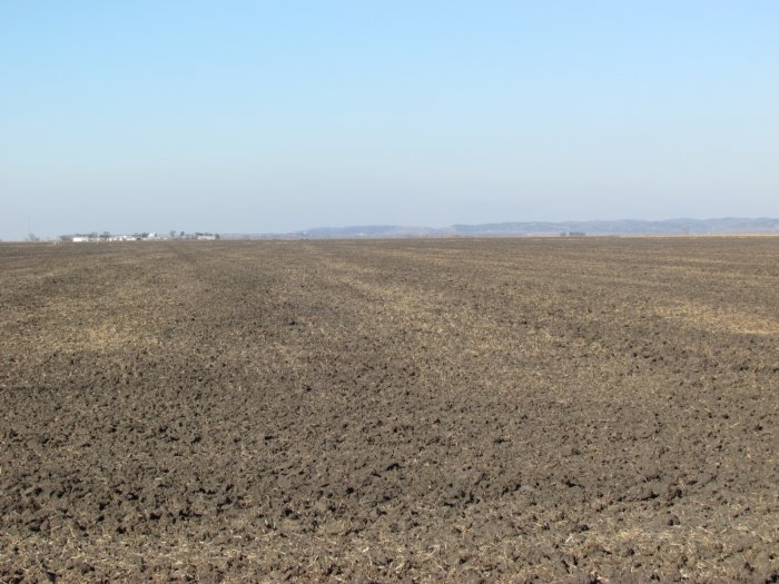 Tract Two: looking west across west half