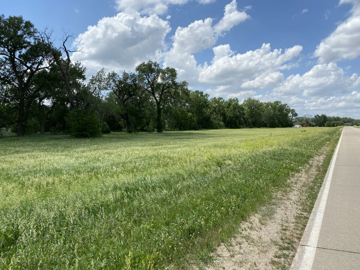 Parcels # 834601350001 / # 834602400001 / # 834602400002 – (Land) Brome/Alfalfa Grass area with mature trees. Approximate acres – 18.97 acres undeveloped. AG LAND FRANKLIN 01-83-46 PT W 1/2 SW 1/4 PT GOVERNMENT LOT 1, 02-83-46 SW PT LOT P BLUE HAVEN, 02-83-46 PT GOVT LOT 1 IN E 1/2 OF SE 1/4; ABSTRACT TO GOVERN. Selling as is.